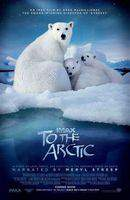 To the Arctic 3D