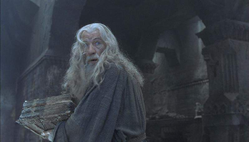 Fellowship Of The Rings Director S Cut