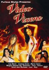 Movie Video Vixens