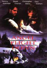 Movie Angel Flight Down