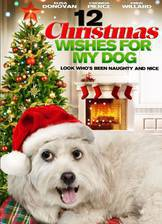 Movie 12 Wishes of Christmas
