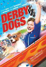 Movie Derby Dogs