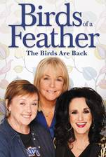 Movie Birds of a Feather