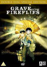 Movie Grave of the Fireflies (Hotaru no haka)