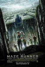 Movie The Maze Runner