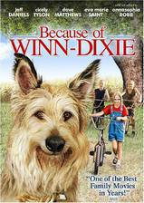 Movie Because of Winn-Dixie