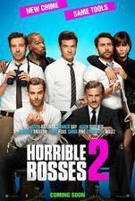 Movie Horrible Bosses 2