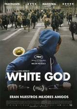 Movie White God