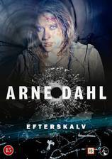 Movie Arne Dahl: Efterskalv