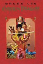 Movie Enter the Dragon