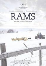 Movie Rams