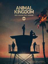 Movie Animal Kingdom