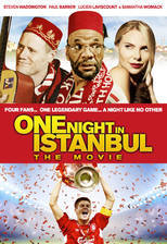 Movie One Night in Istanbul