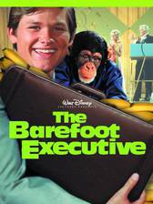 Movie The Barefoot Executive