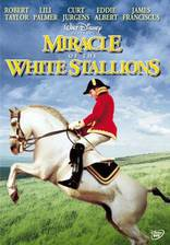 Movie Miracle of the White Stallions