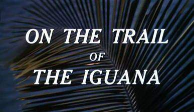 Movie On the Trail of the Iguana