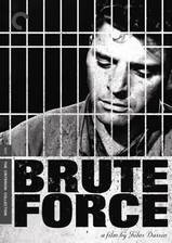 Movie Brute Force