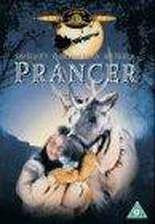 Movie Prancer