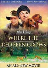 Movie Where the Red Fern Grows