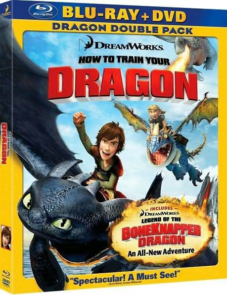 how to train your dragon order to watch