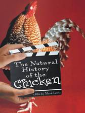 Movie The Natural History of the Chicken