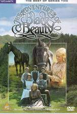 Movie The Adventures of Black Beauty
