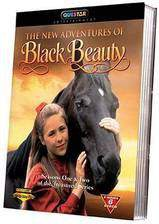 Movie The New Adventures of Black Beauty
