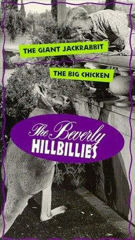 watch the beverly hillbillies online download movie the