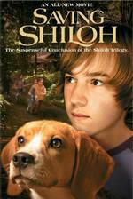 Movie Saving Shiloh
