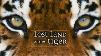 Movie Lost Land of the Tiger