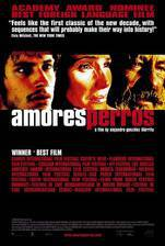 Movie Amores Perros