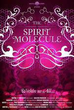 Movie The Spirit Molecule